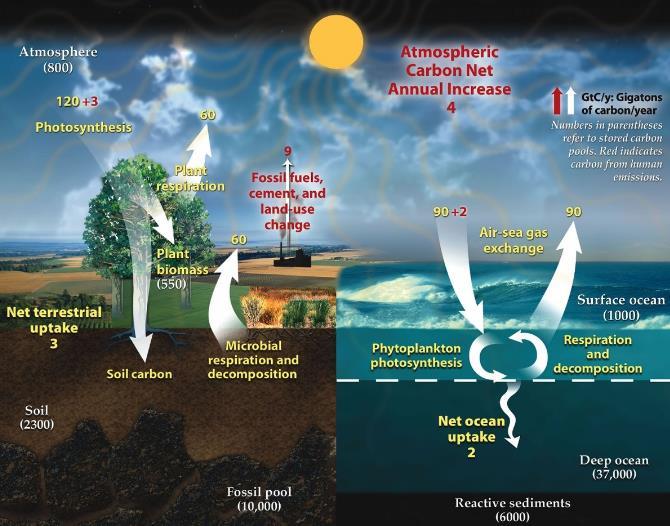 """好不容易收集来的二氧化碳该怎么处理?揭秘被循环的碳的""""一生"""""""