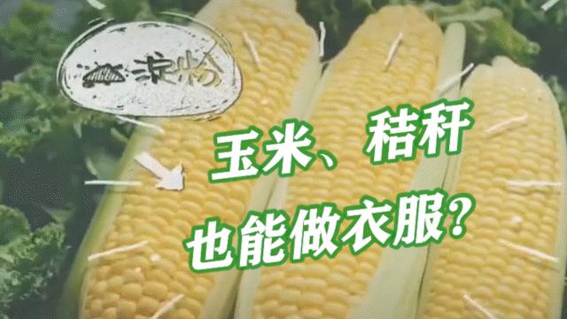 """玉米、秸秆也能做衣服?""""合成生物""""让""""快时尚""""也能环保"""