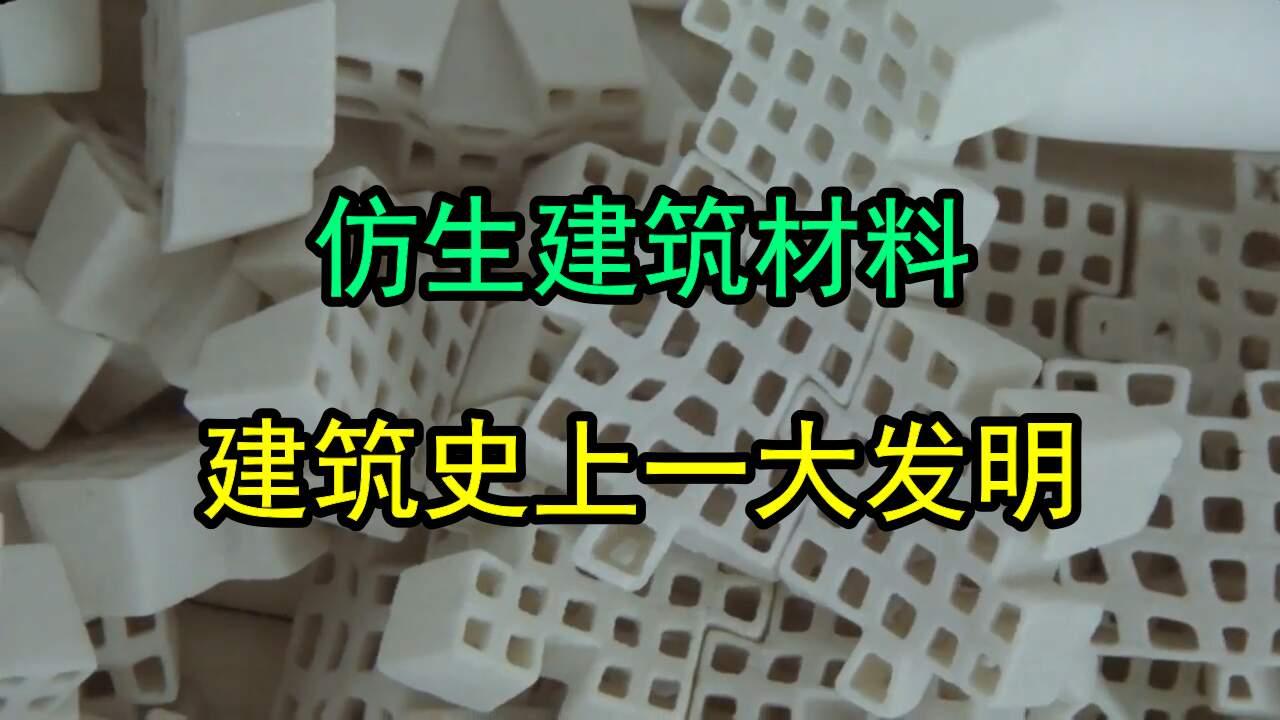 建筑材料用上仿生技术,开创建筑新纪元!