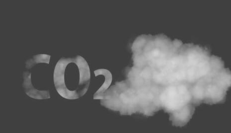 CO₂不是废物!工程大肠杆菌将其制造成碳水化合物和可再生燃料