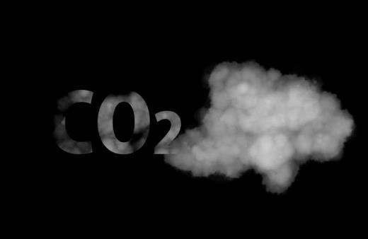 變碳為寶!大腸桿菌用二氧化碳制造碳水化合物和可再生燃料