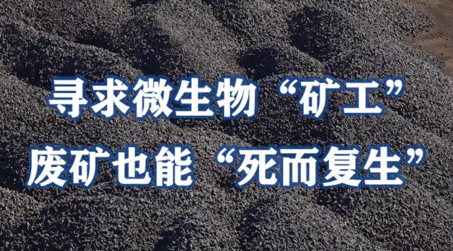 """寻求微生物""""矿工"""",废矿也能""""死而复生"""""""