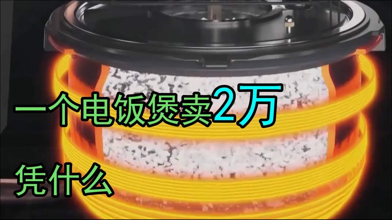 重新定义电饭煲,价值2万的智慧电饭煲!