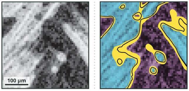 比CT扫描效果更佳!研究人员创建了一种用于计算机模拟的3D图像处理方法