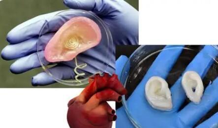 活体3D生物打印技术:将给未来的微创外科手术带来变革?