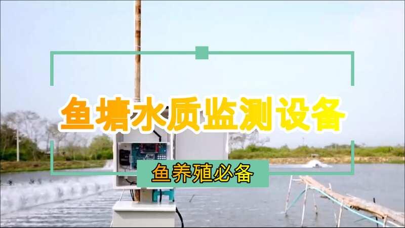 想要养鱼只看水的颜色可以吗?还是需要鱼塘水质监测设备