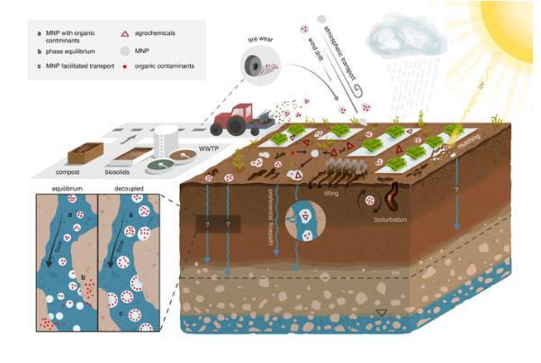 微塑料对地下水有益,对作物有害?塑料颗粒只在上层土壤中释放污染物