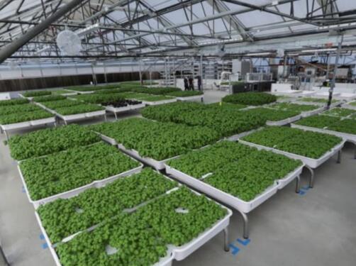 比尔盖茨也关注农业机器人,盘点微软的全球农业版图及国内外农业机器人企业