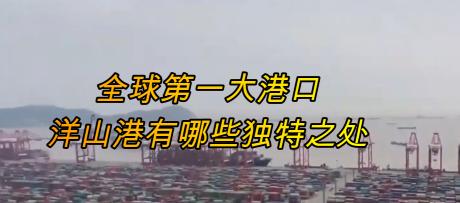 全球第一大港口,洋山港有哪些獨特之處