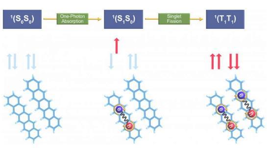 突破性量子化學技術為下一代有機光功能材料鋪平道路