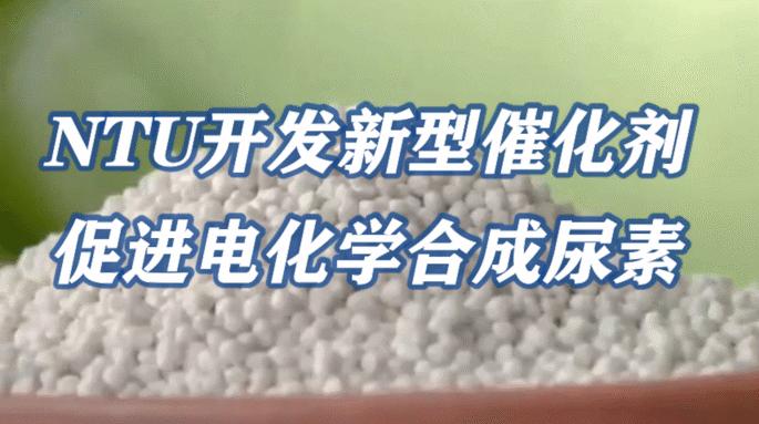 NTU开发新型催化剂,促进电化学合成尿素
