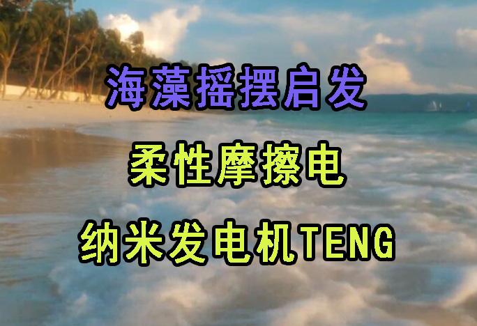 海藻也能促使发电机研发,新一代摩擦发电机TENG